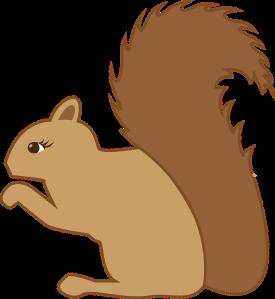 squirrel-1158779_960_720