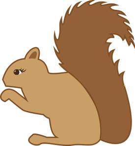 squirrel-1158779_960_720